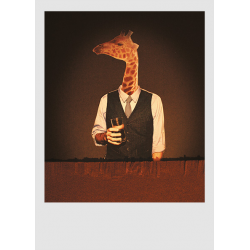 "collage ""Casimiro Parker"""